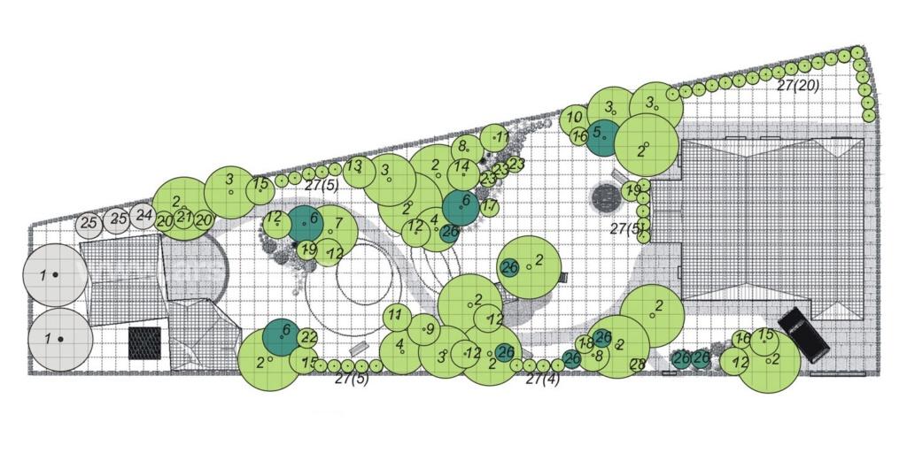 Составление плана участка и дендроплана