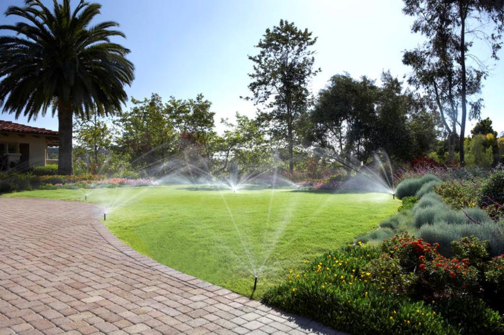 Автоматический полив территории парков